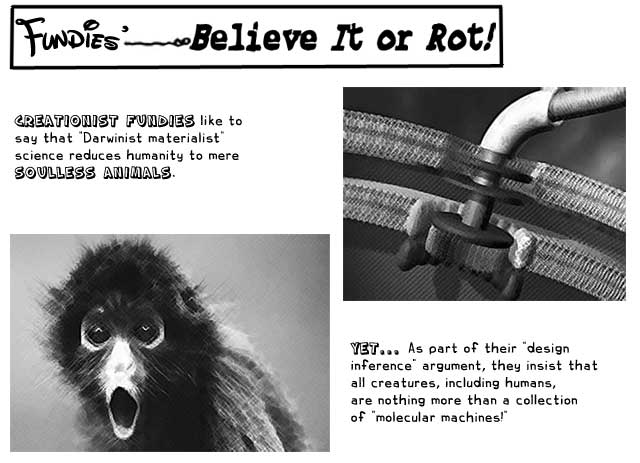 an overview of intelligent design in the textbook of pandas and people This timeline of intelligent design outlines the major events in the development of intelligent design as presented and promoted by the intelligent design movement.